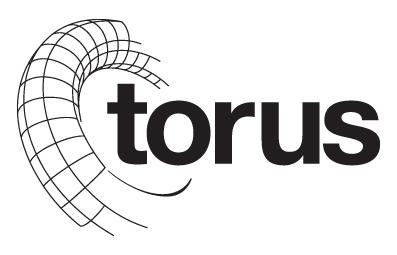 icona Torus