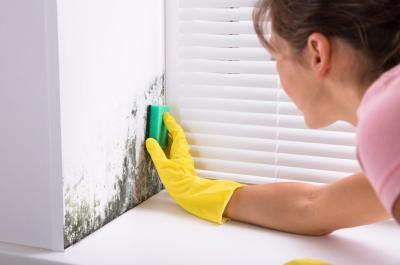 10 Tipi di Umidità nelle Case e Quali danni Provocano